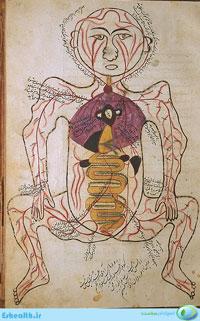 آناتومی و تشریح بدن مربوط به طب سنتی اثر ابن الیاس-تشریح شرایین-شریان ها